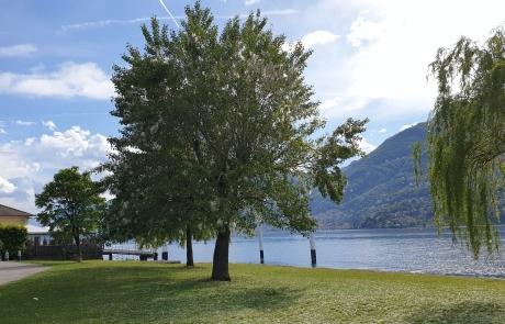 Spiagge a Dervio Lago di Como